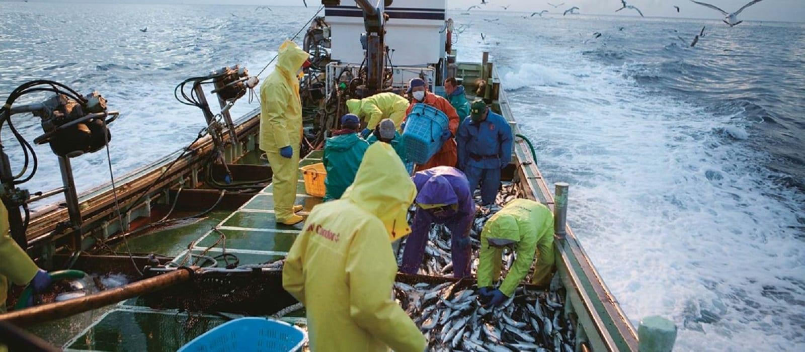 Kyosuiren-fishermen