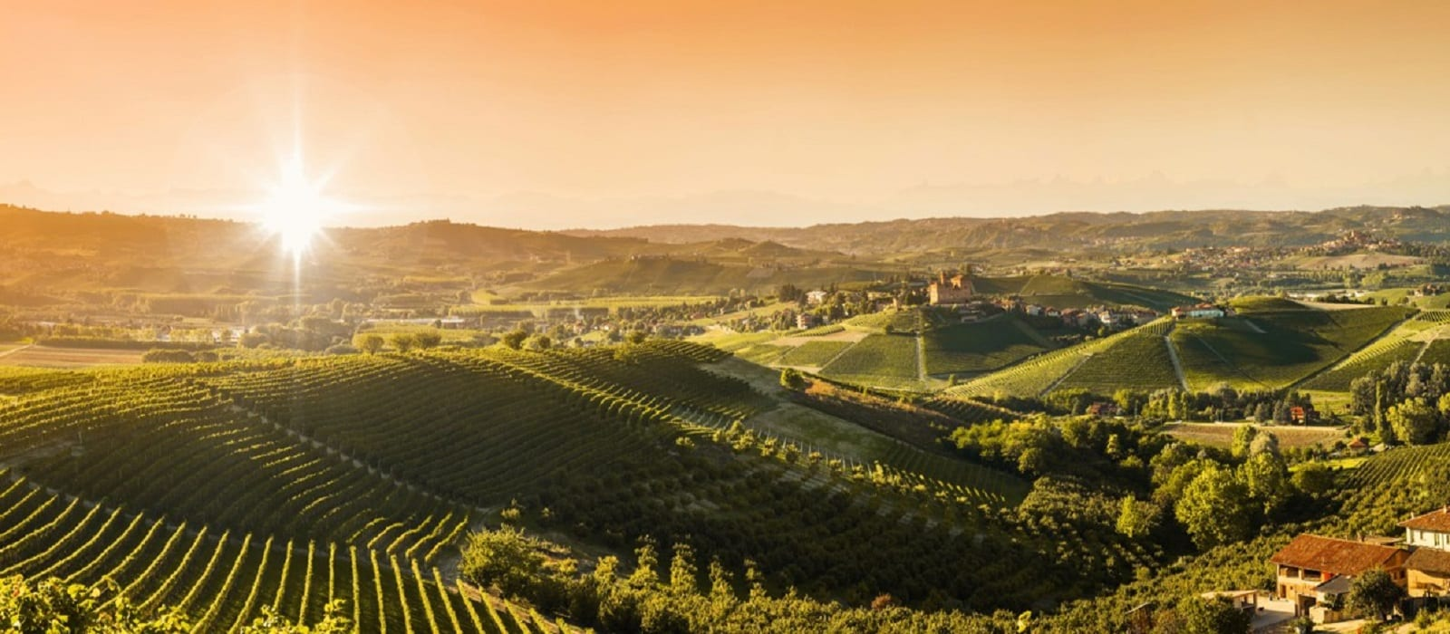 unipol-climate-agriculture-farming