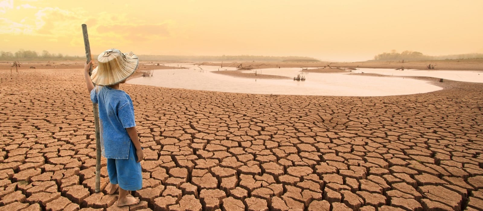 climate-risk-tcfds-psi