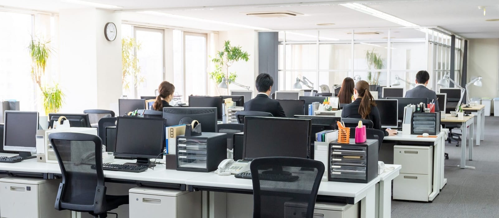 workplace - office - used for Berkley workplace violence