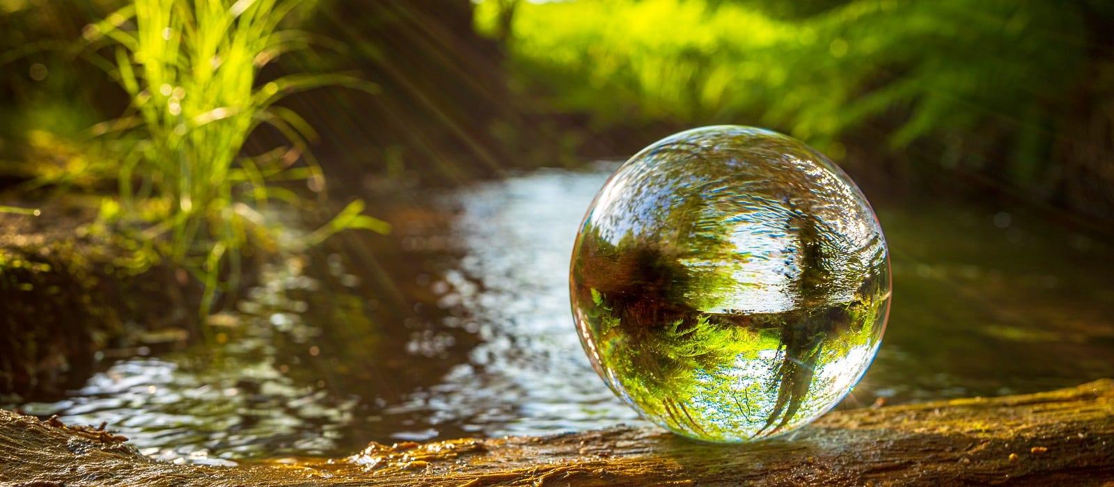 Klimaneutral in die Zukunft - Net-Zero 2050